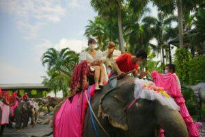 В Таиланде состоялась традиционная массовая свадьба на слонах