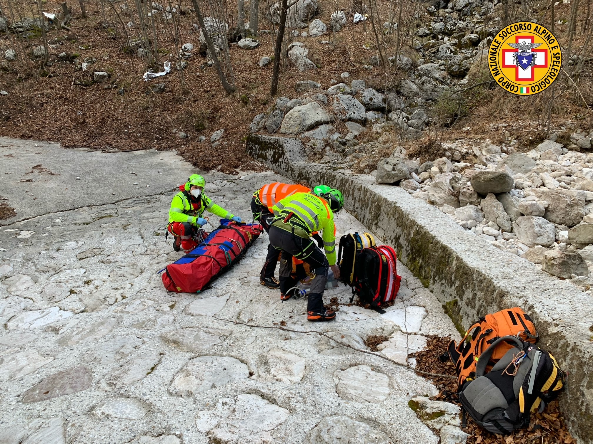 В Альпах турист с поломанной ногой выжил благодаря собаке