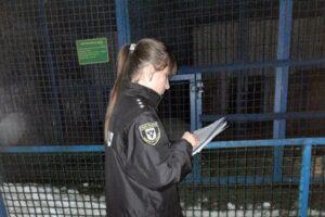 В Черниговской области тигр загрыз работника зоопарка