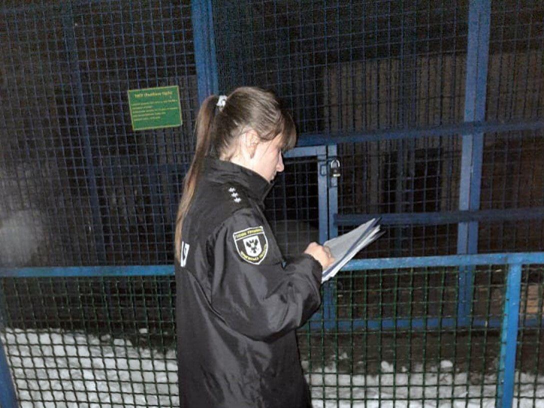 В Черниговской области тигр загрыз работника зоопарка.Вокруг Света. Украина
