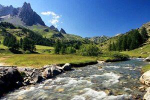 Биоразнообразие большинства рек мира пострадало от деятельности человека: исследование