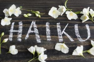 Хокку или хайку: история и интересные факты
