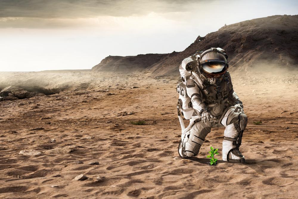 Астробиологи вырастили микробов на марсианских камнях