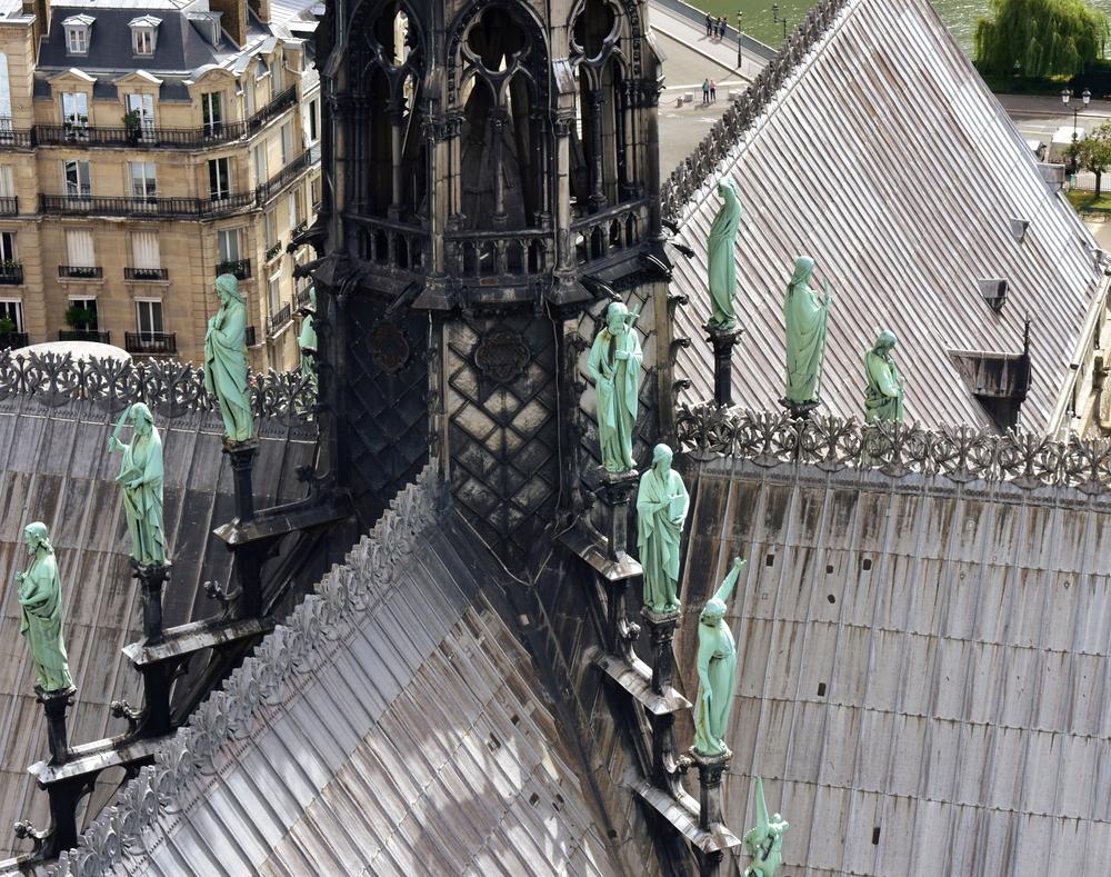 Во Франции вырубят вековые дубы для реставрации собора Нотр-Дам.Вокруг Света. Украина
