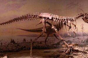 Гиганты и малютки: почему не было динозавров среднего размера?