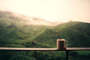 Все наоборот: потребление кофе снижает риск сердечной недостаточности – исследование