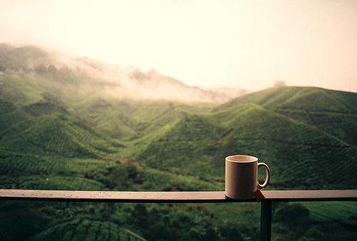 Все наоборот: потребление кофе снижает риск сердечной недостаточности – исследование.Вокруг Света. Украина