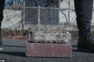 Кирпичи из грибов могут скоро заменить цемент