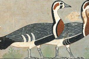 На рисунке из древнеегипетского захоронения обнаружили неизвестную ранее птицу