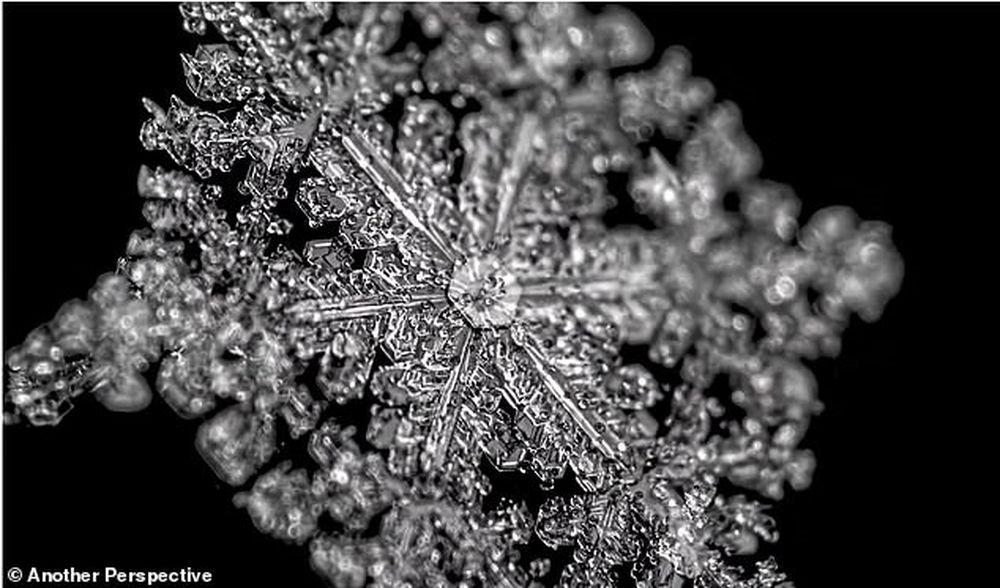 От капелек воды до снежинок: уникальное видео