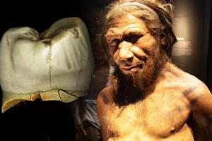 Неандертальцы cоблюдали гигиену полости рта: пользовались зубочистками