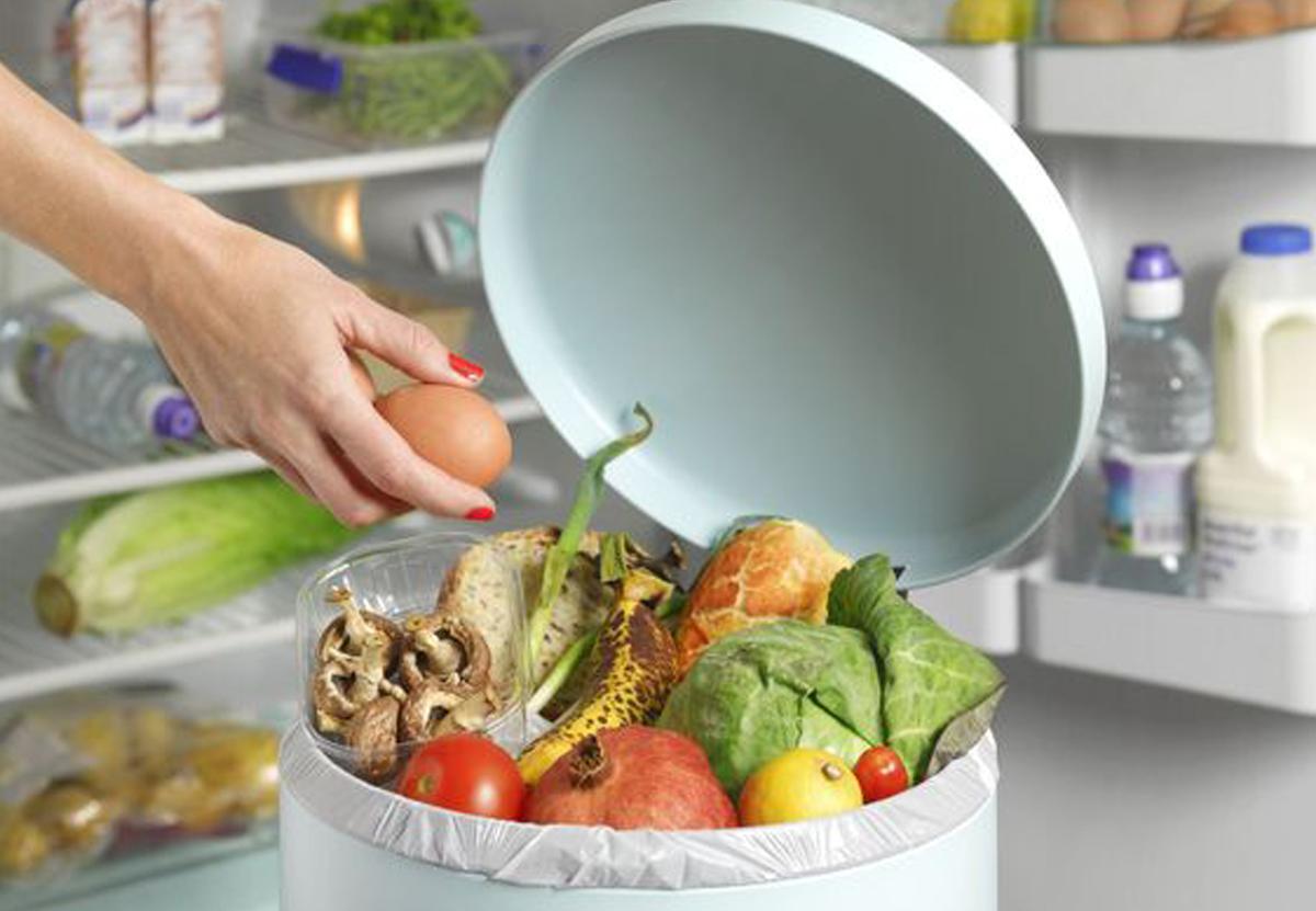 Жители Земли ежегодно выбрасывают более 900 млн тонн еды
