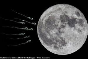 Зачем на Луне планируют построить банк спермы