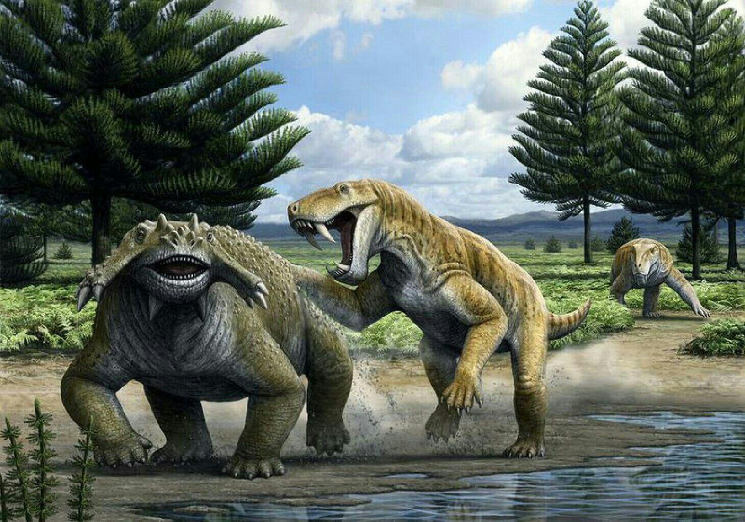 Похожи на ящериц, но походка другая: как передвигались предки млекопитающих
