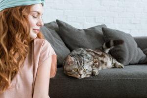 Кошки не сочувствуют хозяевам