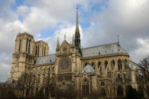 Во Франции протестуют против вырубки вековых дубов для Нотр-Дама
