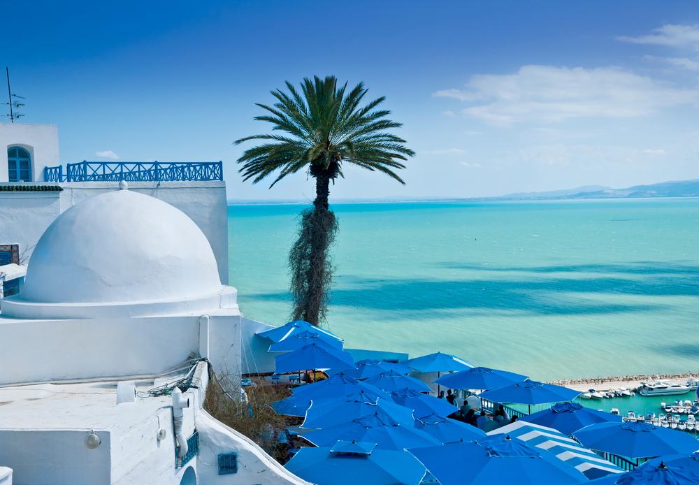 Все цвета Туниса: экзотика с французским шармом.Вокруг Света. Украина