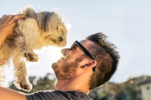 Сколько проживет ваша собака