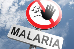 Малярия появилась раньше земледелия