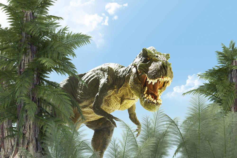 В молодости тираннозавр не был жестоким: таким его делала жизнь.Вокруг Света. Украина