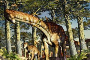 В Патагонии нашли останки древнейшего титанозавра: им 140 млн лет