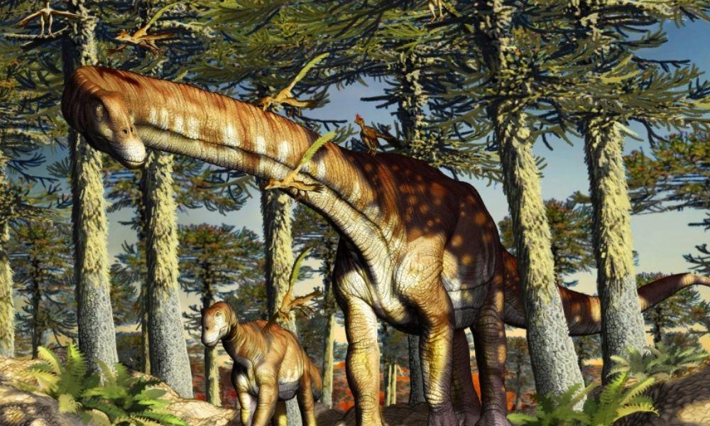 В Патагонии нашли останки древнейшего титанозавра: им 140 млн лет.Вокруг Света. Украина