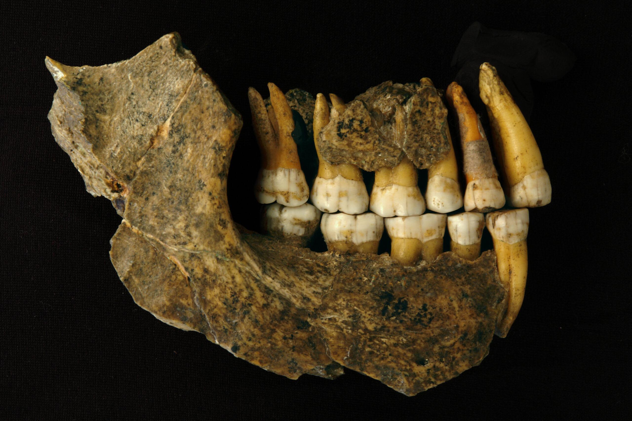 Неандертальцы исчезли из Европы намного раньше, чем считалось