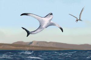 В Мексике обнаружили неизвестный вид древней крылатой акулы