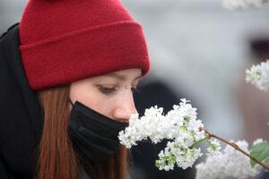 Почему запахи могут оживлять воспоминания