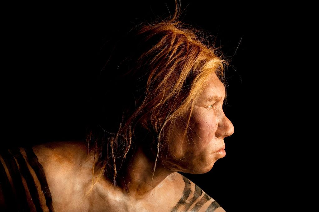 Неандертальцы скрещивались не только с людьми современного типа, но и с денисовцами