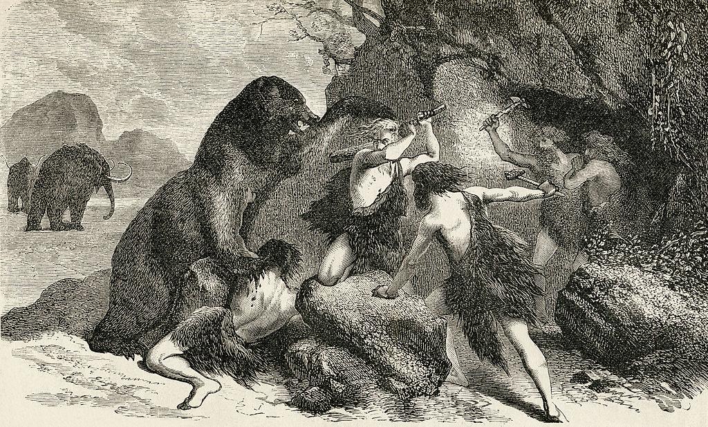 """Древний человек """"нарастил"""" мозг, потому что вымерли крупные животные: новая теория.Вокруг Света. Украина"""