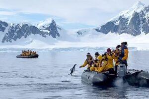 В Антарктиде пингвин спасся от косаток в лодке туристов