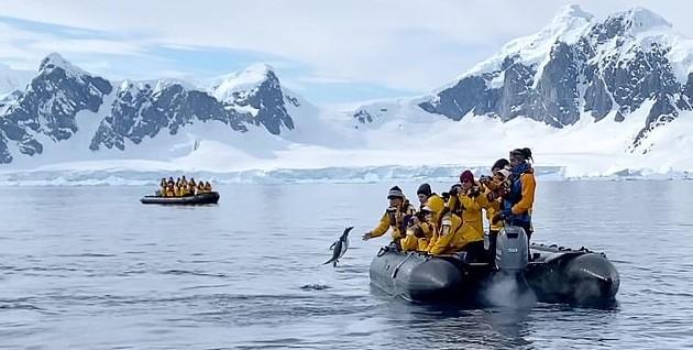 В Антарктиде пингвин спасся от косаток в лодке туристов.Вокруг Света. Украина