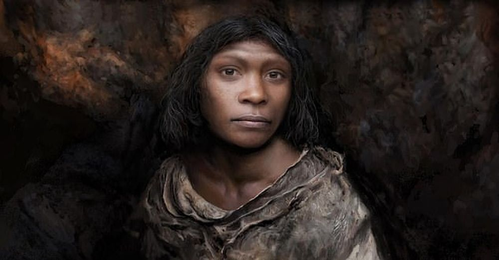Не мальчик, а девочка: как определили пол скелета возрастом 800 000 лет.Вокруг Света. Украина