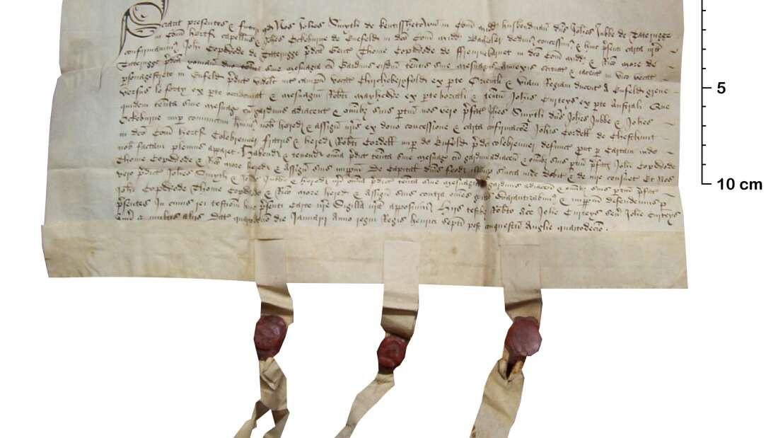 Как средневековые юристы боролись с подделкой документов: все дело в пергаменте