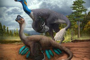 Впервые найдены останки динозавра, высиживавшего яйца