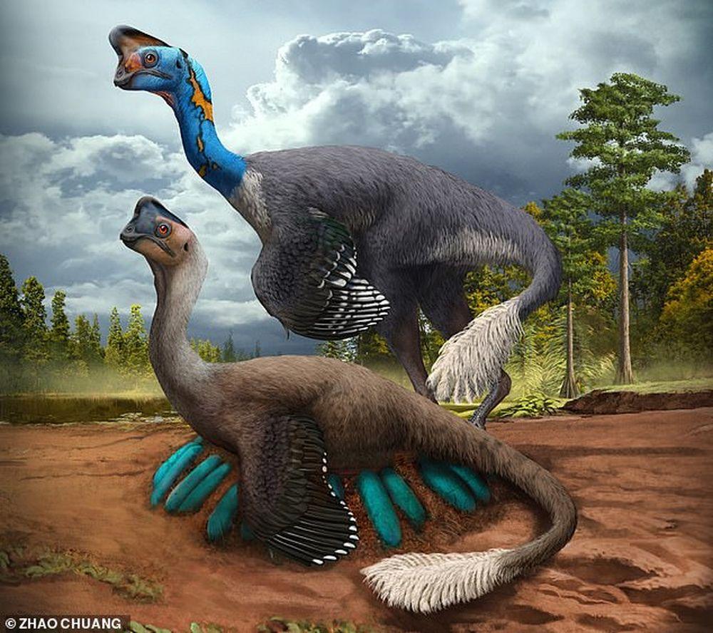 Впервые найдены останки динозавра, высиживавшего яйца.Вокруг Света. Украина