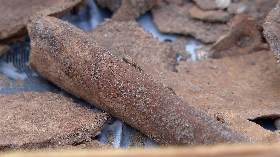 На острове Гернси найдены ритуальные кости возрастом 5000 лет