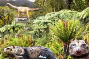 В Чили нашли останки вымершего скунса эпохи динозавров