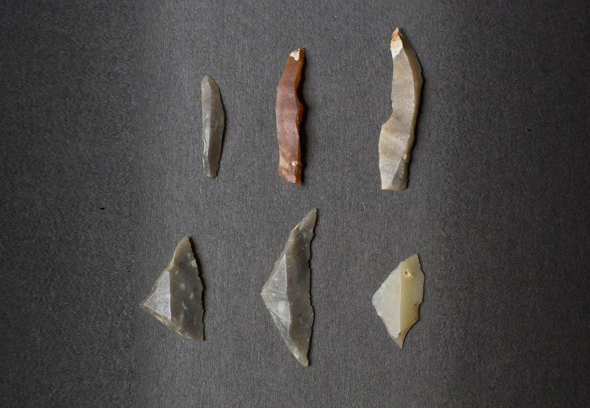В горах Шотландии найдены редкие артефакты эпохи мезолита
