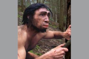 В Кении обнаружили древнейшие останки человека прямоходящего