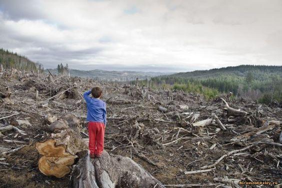 Всего 3% суши на Земле не затронуто деятельностью человека