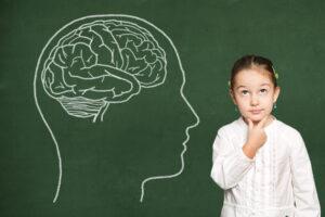 Лицо и форма мозга связаны генетически