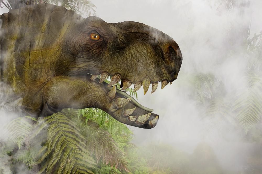 Тираннозавры охотились стаями, как волки.Вокруг Света. Украина