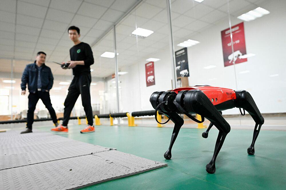 В Китае придумали робопса для помощи людям с инвалидностью