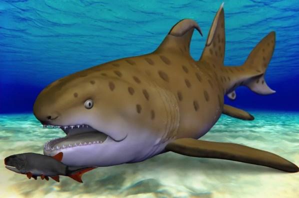 Уже не Годзилла: гигантской доисторической акуле дали официальное имя.Вокруг Света. Украина