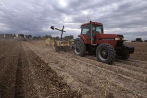 Изменение климата уже привело к резкому сокращению производства продуктов питания