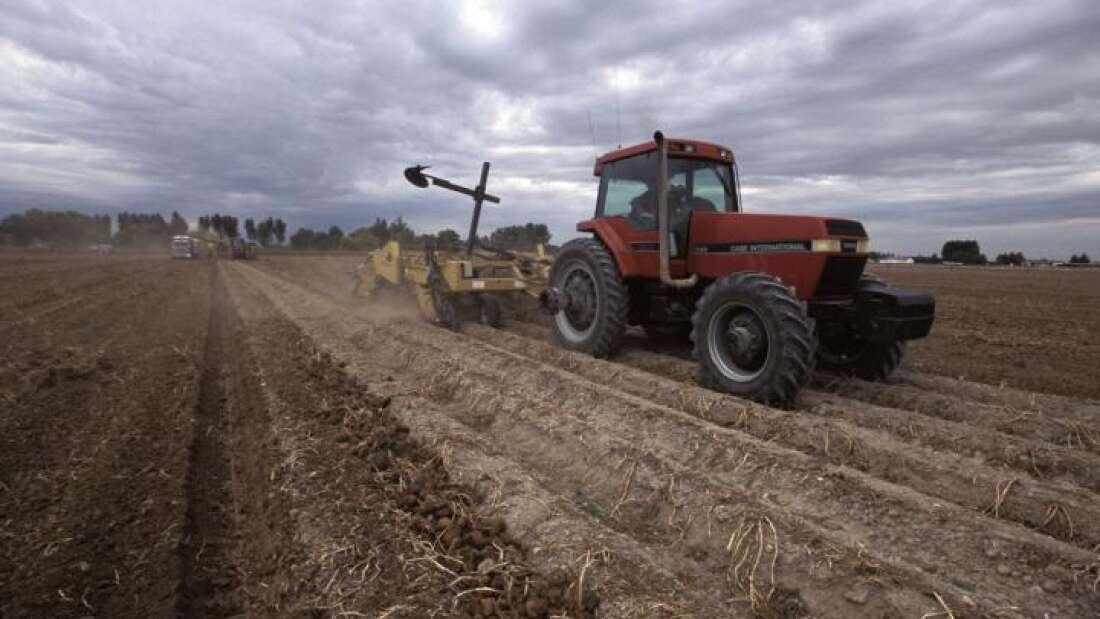 Изменение климата уже привело к резкому сокращению производства продуктов питания.Вокруг Света. Украина