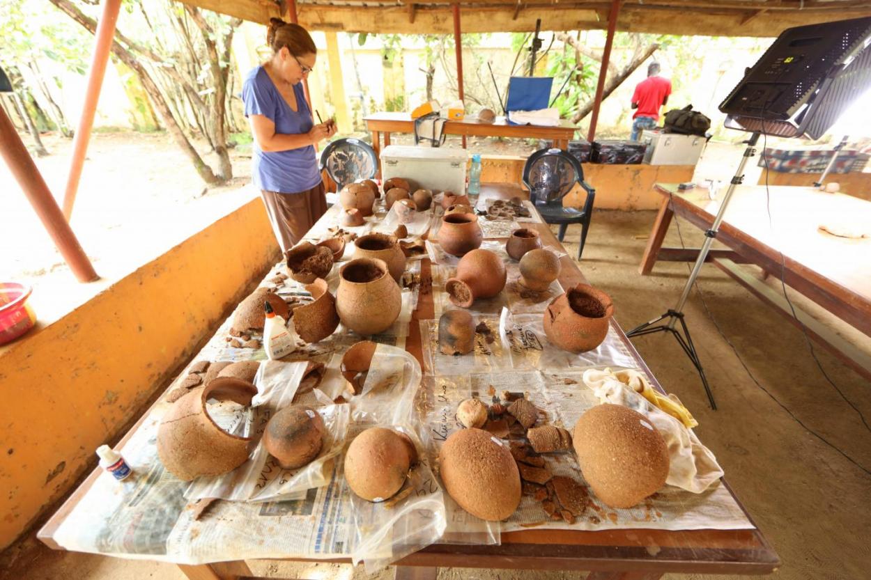 Древняя керамика рассказала об охоте за медом в доисторической Западной Африке