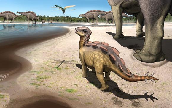 В Китае нашли самый маленький в мире след стегозавра